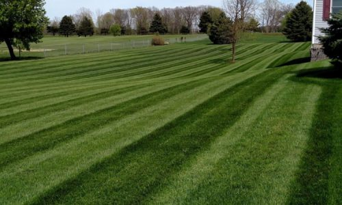 C&C Lawn and Landscape Services in Ionia MI